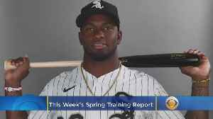 Spring Training Report: Luis Robert, Jo Adell, Other Possible Future All-Stars Take Field [Video]