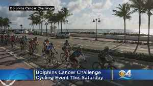 Dolphins Cancer Challenge Main Cycling Event Kicks Off Saturday At Hard Rock Stadium [Video]