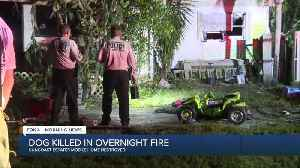 MORNING RUSH: Top stories in SWFL 02/26/20 [Video]