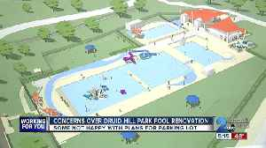 Concerns over Druid Hill Park pool renovation, some not happy with plans for parking lot [Video]