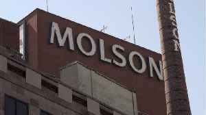Shooter Goes On Rampage At Molson Coors Plant In Milwaukee [Video]