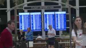 Travel agent says clients still traveling overseas in wake of coronavirus [Video]