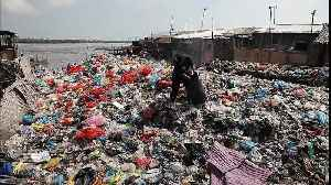Volunteers clean up heaps of plastic waste on the Belawan seafront in Indonesia [Video]