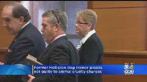 Fired Holliston Dog Trainer Pleads Not Guilty To Animal Cruelty Charge [Video]
