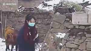 University student braves snow to find signal to access online lessons during COVID-19 outbreak [Video]