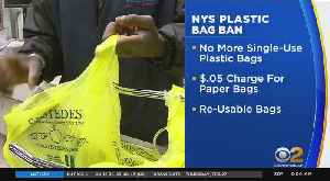 NYS Plastic Bag Ban Starts Sunday [Video]