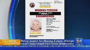 Missing Miami-Dade Woman May Be In Need Of Services [Video]