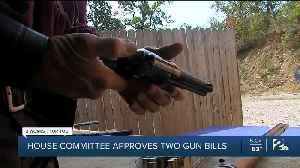 House Committee Approves Two Gun Bills [Video]