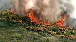Calfire Crews Scramble to Contain Rare Winter Wildfire on San Bruno Mountain [Video]