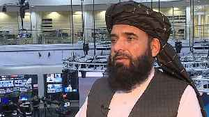 Taliban spokesperson in Doha [Video]