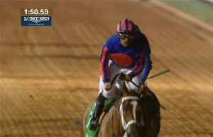 Maximum Security wins the Saudi Cup, the world's richest horse race [Video]