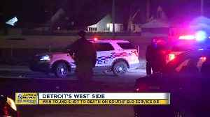 Man found shot to death on Southfield Service Drive [Video]