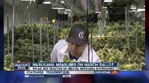 Marijuana measures come up short on March ballot [Video]