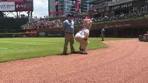 Mascot challenges security guard to dance-off, gets owned epic style [Video]