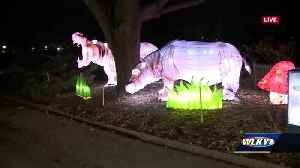 SNEAK PEEK: Asian Lantern Festival at Louisville Zoo [Video]