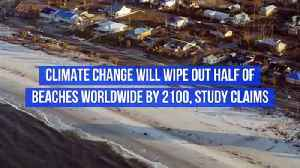 Climate Change Will Wipe out Half of Beaches Worldwide by 2100, Study Claims [Video]