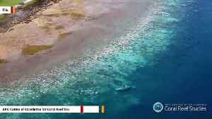 Things Just Keep Getting Worse For Great Barrier Reef [Video]