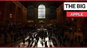 Morning light streams through the North facing windows of Grand Central Terminal, New York. [Video]