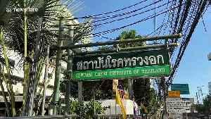 British businessman, 43, being treated for coronavirus in Thailand [Video]