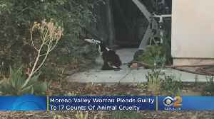 Moreno Valley Woman Pleads Guilty To 17 Counts Of Animal Cruelty After 100 Cats Found In Home [Video]