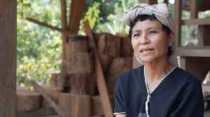 Myanmar: Karen minority demands protection in peace park [Video]