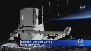 SpaceX Dragon Cargo Capsule Reaches ISS [Video]