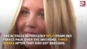 Amanda Bynes back with Paul Michael? [Video]