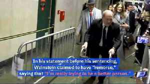 Harvey Weinstein Is Sentenced to 23 Years in Prison [Video]