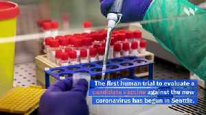 US Begins First Human Trial of Coronavirus Vaccine [Video]