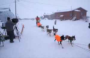 Waener still leads the Iditarod as the finish line nears [Video]