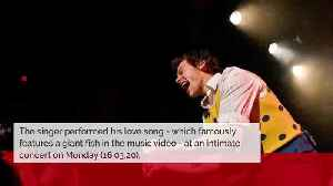 Harry Styles jokes Adore You is about his pet fish [Video]