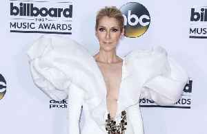 Celine Dion's fashion style is a 'constant adventure' [Video]