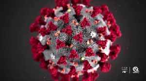 Pleasant surprise: No coronavirus cases yet on the Treasure Coast [Video]