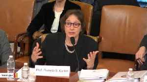 Watch: Impeachment Witness Pamela Karlan Brings Up Trump's Son Barron During Hearing [Video]