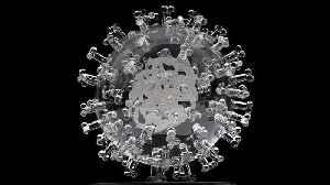 British Artist Reveals Coronavirus Glass Sculpture [Video]