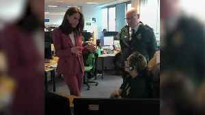 Kate and William visit UK 111 call centre staff amid coronavirus outbreak [Video]
