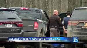 K9 bites alleged robber during stand-off [Video]