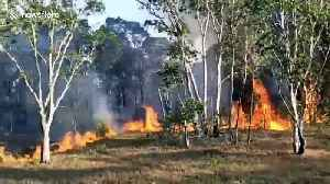 Soldiers battle to contain blaze tearing through forests in southern Thailand [Video]