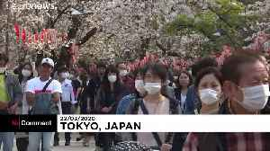 News video: Japanese go out en masse to celebrate cherry blossom season despite coronavirus outbreak