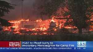 PG&E Agrees To Plead Guilty To 84 Counts Of Involuntary Manslaughter For Camp Fire Deaths [Video]