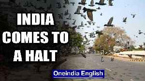 Lockdown in 30 states & UTs: What is working and what is not   Oneindia News [Video]
