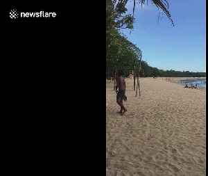 Empty beaches spotted in popular tourist destination Bali due to COVID-19 pandemic [Video]