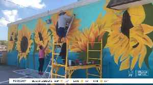 'Happy Mural Project' near St. Petersburg High is drawing smiles from social distancers [Video]
