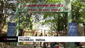 Bollywood braces for huge losses amid coronavirus lockdown [Video]