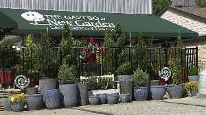 Garden Businesses Booming Amid Coronavirus Outbreak [Video]