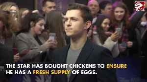 Tom Holland buys chickens [Video]