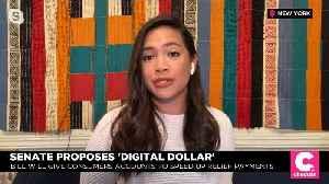Senate Introduces 'Digital Dollar' Legislation for Coronavirus Relief [Video]