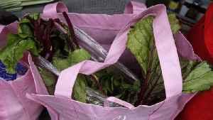 Reusable shopping bags banned in Massachusetts during coronavirus emergency [Video]