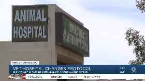 Tucson veterinary hospital changes protocol as coronavirus fears grow [Video]