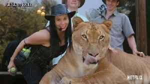 Cardi B, Sam Smith, 2 Chainz Weigh In on Netflix's 'Tiger Heat'   Billboard News [Video]